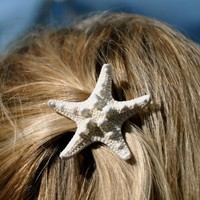 Starfish Hair Barrette Knobby Starfish Hair by sandnsurfcreations