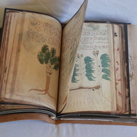 Voynich Manuscript Reproduction