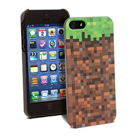 Minecraft Grassy Block Case