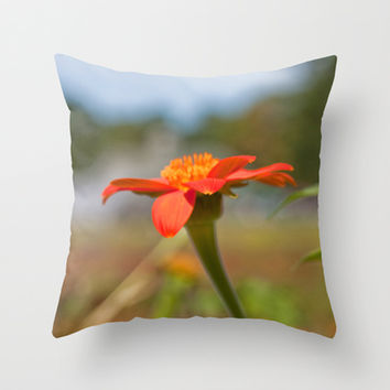 September Flowers Throw Pillow by Legends of Darkness Photography