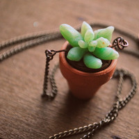 Clay Planter Succulent Necklace