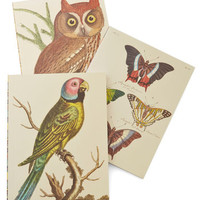 Chronicle Books Owls Scenic Scribbles Journal Set