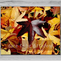Inspirational Quote Photo, Dare to be Different, Fall leaf Photograph, Typorgraphy Print, Photo quote print red yellow print