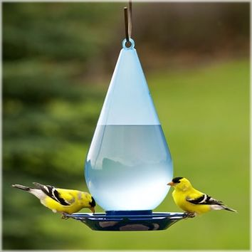 SheilaShrubs.com: Droplet Waterer PP781 by Perky Pet : Birding Waterers
