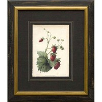Phoenix Galleries Strawberries Framed Print - HP233