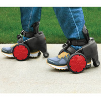 The Electric Skates