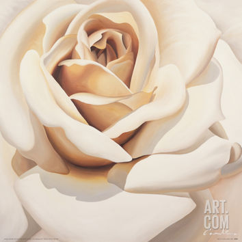 Rose Giclee Print by Carolina Alotus at Art.com