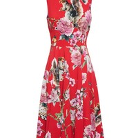 DOLCE & GABBANA | Wildlife Print Crepe Dress | Browns fashion & designer clothes & clothing
