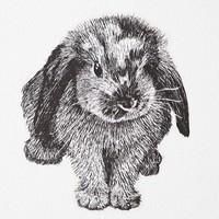 Plum & Bow Bunny Wall Decal- Black & White One