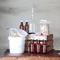 1 Gallon BREWERY IN A BOX with 2 Recipe Kits - Brew in a Bag