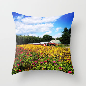 Mountain View Farm, 2 Throw Pillow by Legends of Darkness Photography