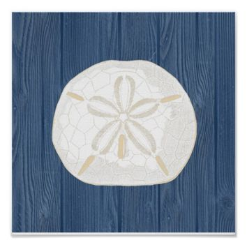 Sand Dollar Vintage Blue Wood Beach Poster