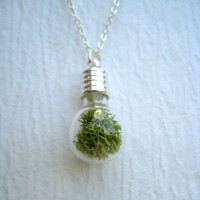 moss terrarium necklace glass lightbulb silver