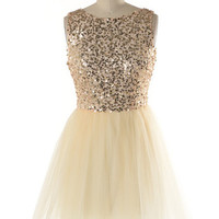 Dazzling Parisian Ballerina Tulle Dress