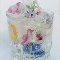 Ice / Wildflower Ice Cubes