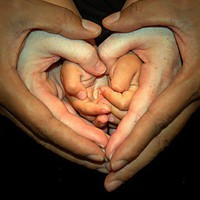 Photo Ideas / Hands of Love - JPG Photos