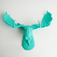 The Tiffany - Turquoise Resin Moose Head- Moose Resin Turquoise Faux Taxidermy- Chic &amp; Trendy