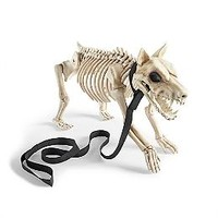 21-1/2' Skeleton Dog on Leash
