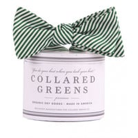 CG Stripes Bow in Forrest Green by Collared Greens