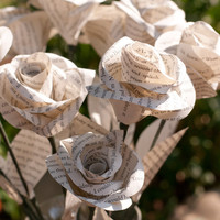 One Dozen Long Stem Book Page Roses