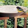 Deck -Mount Bird Bath