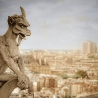 Gargoyle of Notre Dame