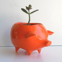 Ceramic Pig Planter Vintage Design in Orange