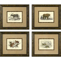 Phoenix Galleries Hare Framed Prints - Hare Series