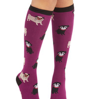 ModCloth Critters Pug it Out Socks