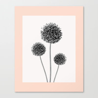 Trio Canvas Print by Heart of Hearts Designs