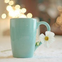 Morning Coffee (5 by 7 Original  Fine Art Photograph)