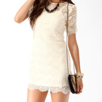 Eyelash Lace Zipper Back Dress