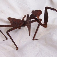 Metal Praying Mantis, great insect to have in your garden... by custommetalart