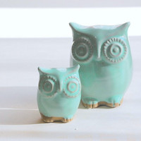 owl home decor in Mint julip
