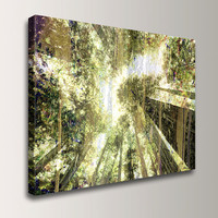 "Forest Art Print, Digital Mixed Media Collage, Modern Art Canvas, 30x40 Wall Art, "" Forest Light """