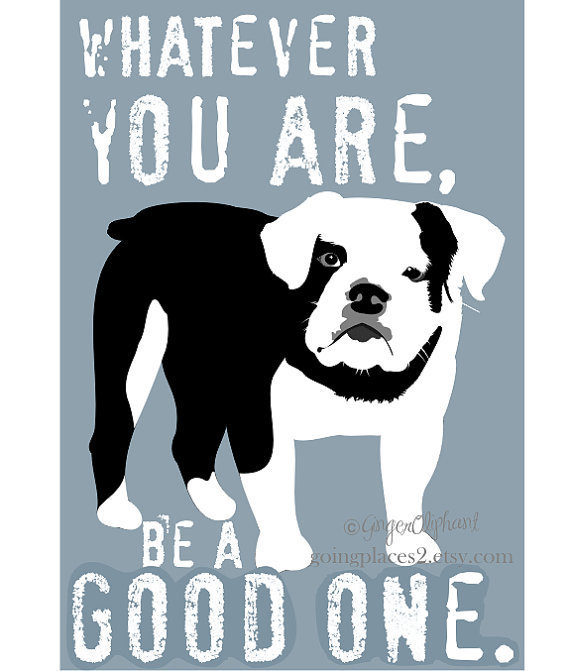 Quotes about english bulldogs quotesgram - Cute English Bulldogs Quotes Quotesgram