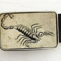 Scorpio The Scorpion Zodiac Astrology Belt Buckle by bmused