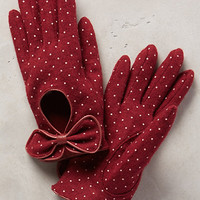 Valloire Dotty Gloves