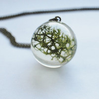 Green Moss Necklace Real Forest Moss Specimen Orb Resin Pendant Botanical Dried Plant Nature Woodland