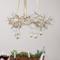 DIY Decorating: How to Create a Branch Chandelier | Casa Dise?o LLC
