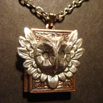 Victorian Style Steampunk Feathered Owl Head Locket Necklace in Silver and Copper (421)