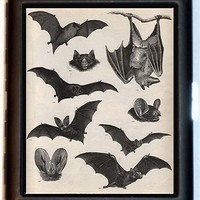 Bat & More bats Gothic Anatomy Nature Cigarette Case or ID card or Wallet or MP3 and Earbuds Holder Case