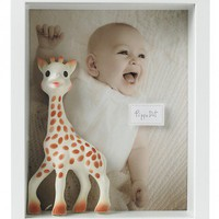 Darcy's Frames and Scrapboxes - Martha Stewart Crafts
