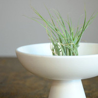Vintage White Chalice Planter