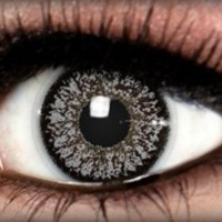 Calaview Grey - Calaview - Colored Contacts by ExtremeSFX