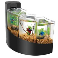 Aqueon Betta Falls Aquarium Kit