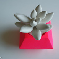 Neon Pink Modern Faceted Geometric Container, White Succulent Sculpture, Desktop Accessory, Tabletop Centerpiece
