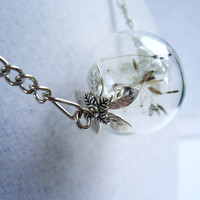 Real Dandelion Seed Glass Orb Necklace Silver, Lucky You