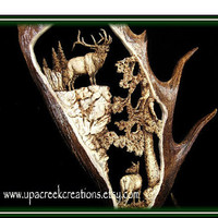 Original Moose Antler Carving Antler Art by Artist  Raini M. Allen Bugling Elk Cow Elk  on Naturally shed moose antler