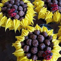 Wildflowers: Cupcake Fun